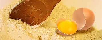 تصویر پودر زرده تخم مرغ