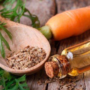 روغن ضروری بذر هویج در درجه اول برای کاربردهای درمانی آن در مراقبت از پوست استفاده می شود