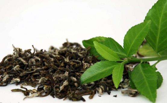 خرید اسانس چای سبز