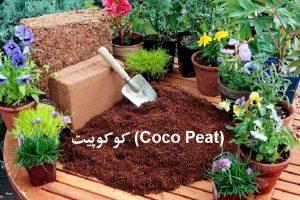 کوکوپیت (Coco Peat)