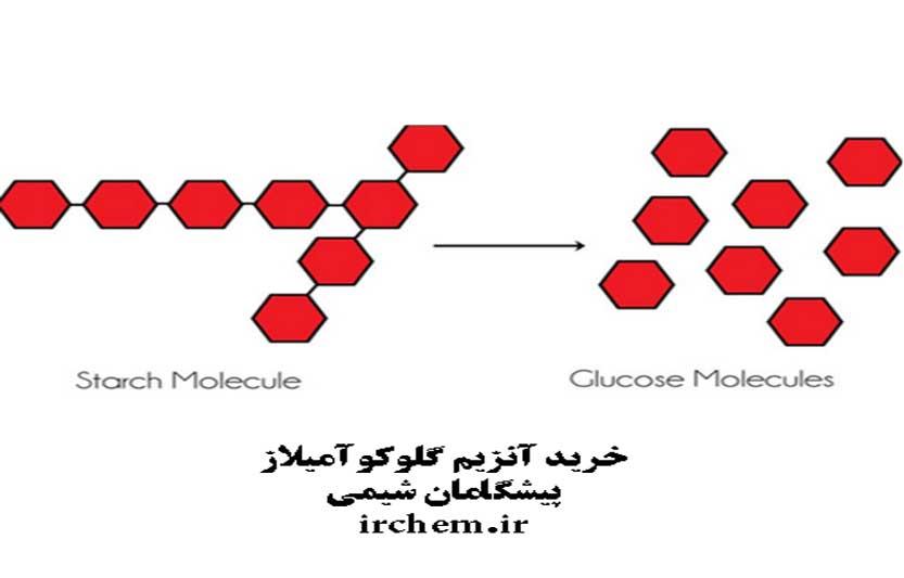 گلوکوآمیلاز
