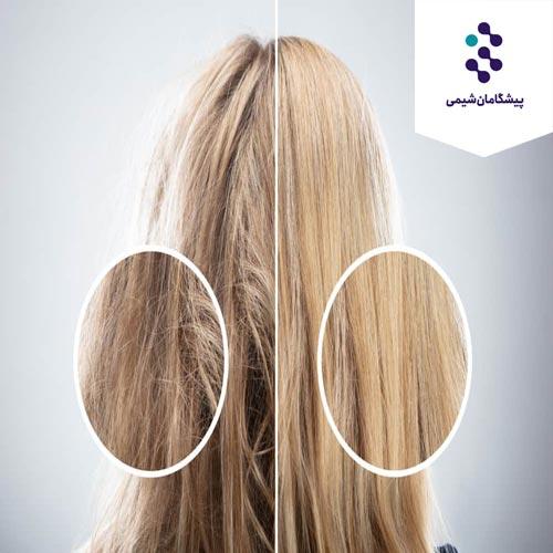 فرمول شامپو مخصوص مو های آسیب دیده