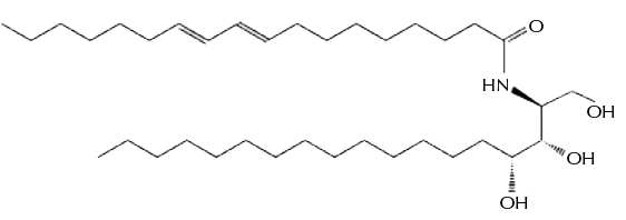 فیتواسفنگوزین
