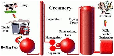 پودر شیر چگونه تهیه می شود